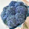 Buchet din 9 Hortensii Albastre
