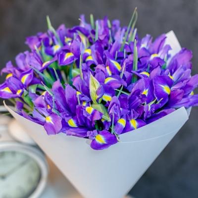 Buchet din 25 irisi in hirtie alba