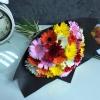 35 Gerbere multicolore în hârtie neagră