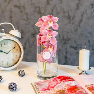 Orhidee roza în vaza