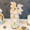 Orhidee alba în vaza