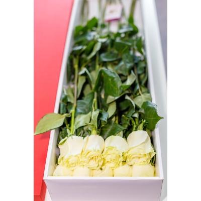 Trandafiri Albi în Cutie (9 buc)