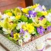 Flori mix în lădiță
